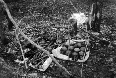 Останки советских воинов найденные