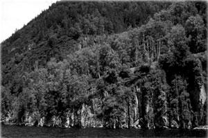 Алтайский край. Фото О.Костерина